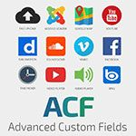 Advanced Custom Fields Pro v.1.1.0